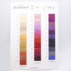 BC Garn Farbkarten von BC Garn Bio Shetland with new colors